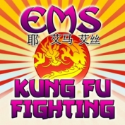 kung_fu_fighting