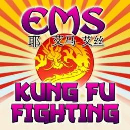 kung_fu_fighting